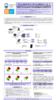 Descargar documento- 31456 - application/pdf