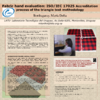 Descargar documento-31977 - application/pdf