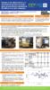 Descargar documento-31966 - application/pdf