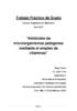 Descargar documento-32185 - application/pdf