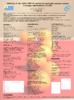 Descargar documento-30091 - application/pdf